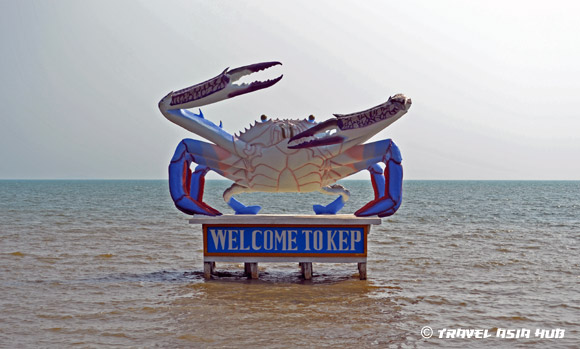 Welcome to Kep crab